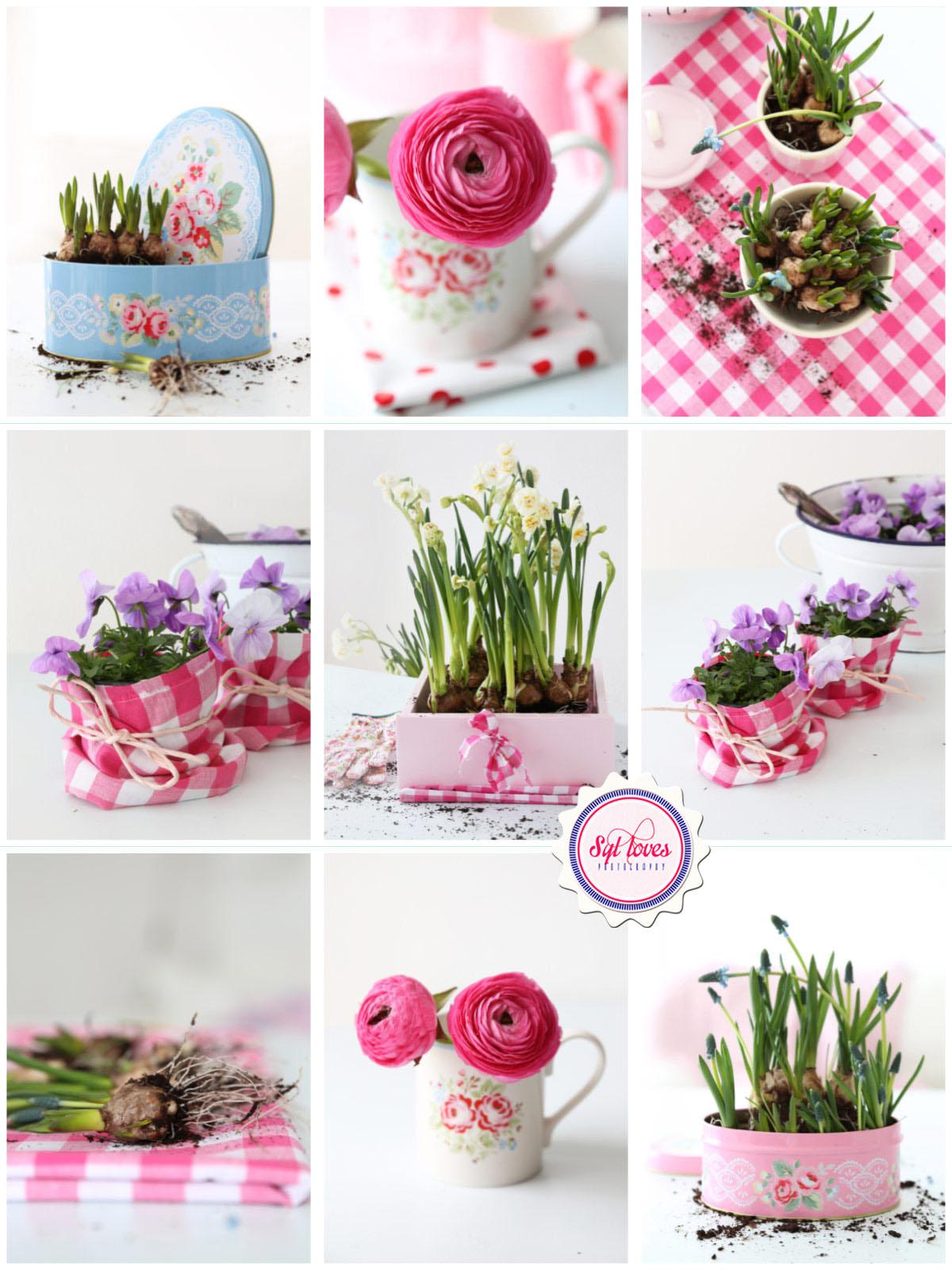 Blumen-Ideen-Valentinstag