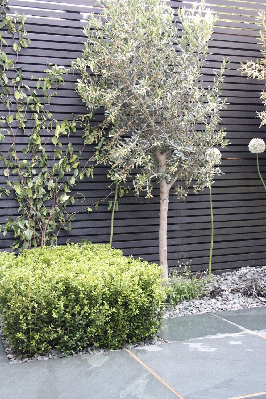Terrasse Gestalten Bilder