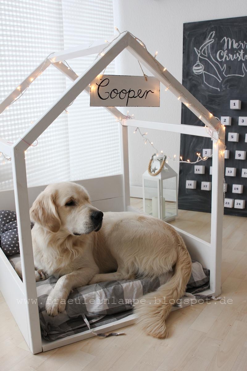 Hundehuette-selbst-bauen-holz