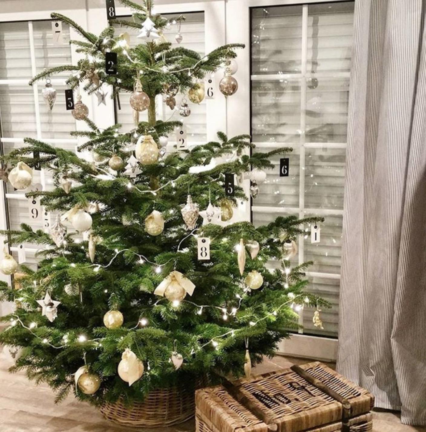 weihnachtsbaum-instagram