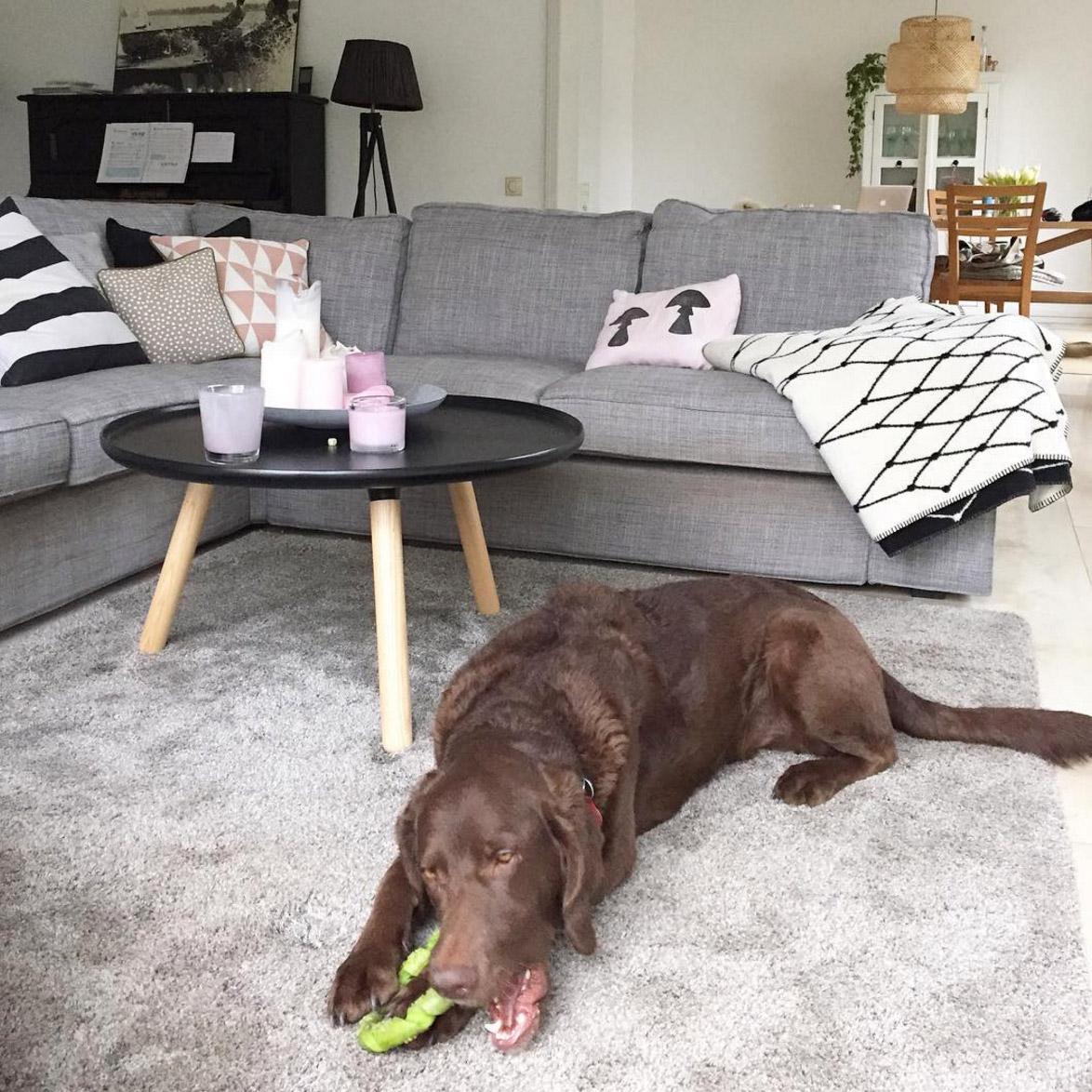 Sofakonfetti sch ne sofas von bloggern und von instagram for Graues ecksofa