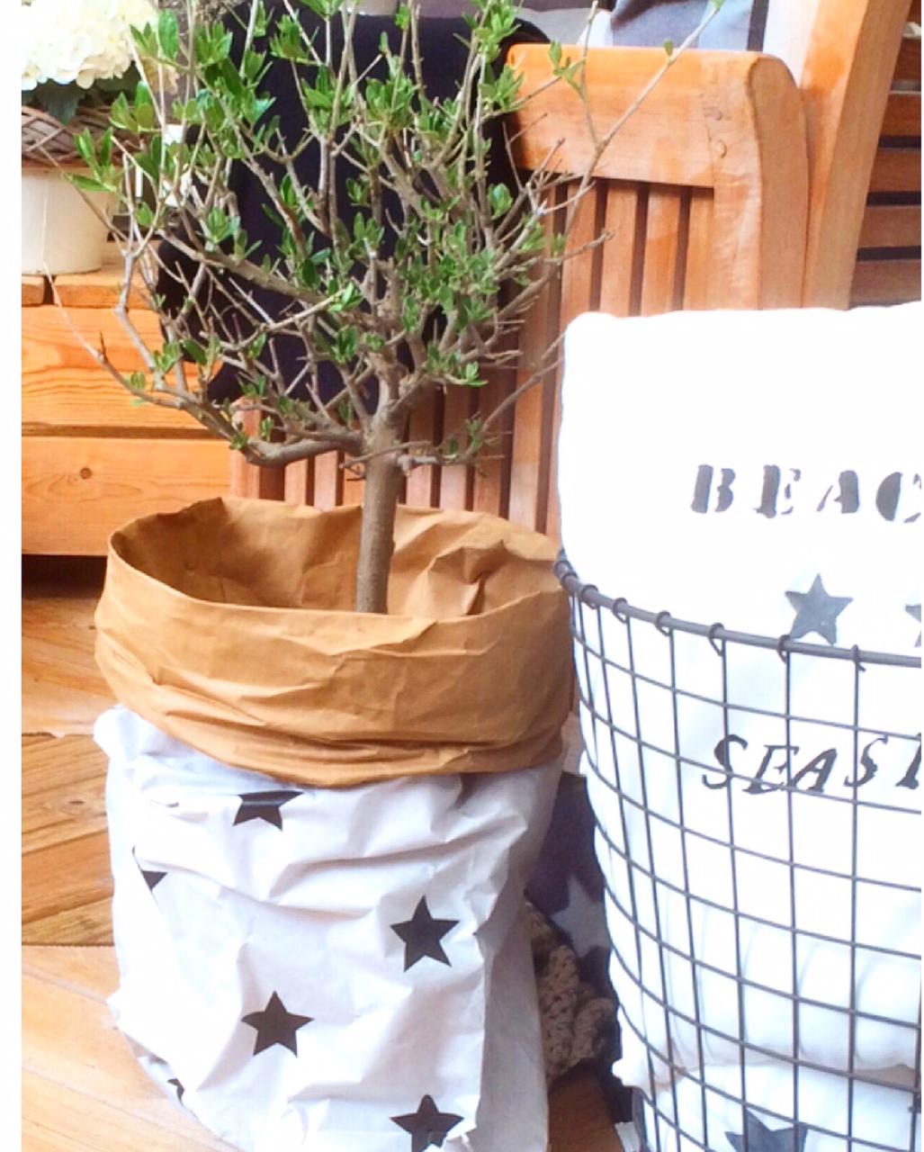 paperbags-mit-sternen