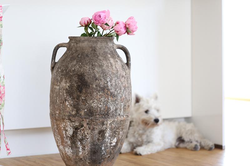 antike-vase-rosen