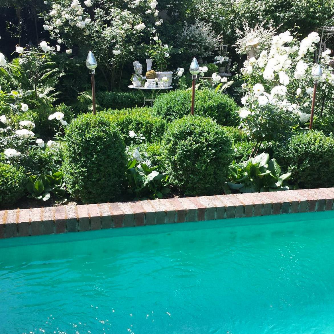 buchsbaum-rosen-garten-anlegen-ideen