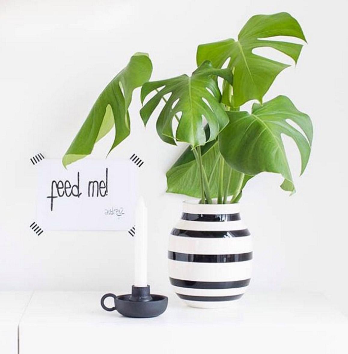 vase-schwarz-weisse-streifen