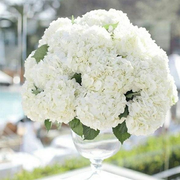 dekoideen-mit-hortensien-hochzeit