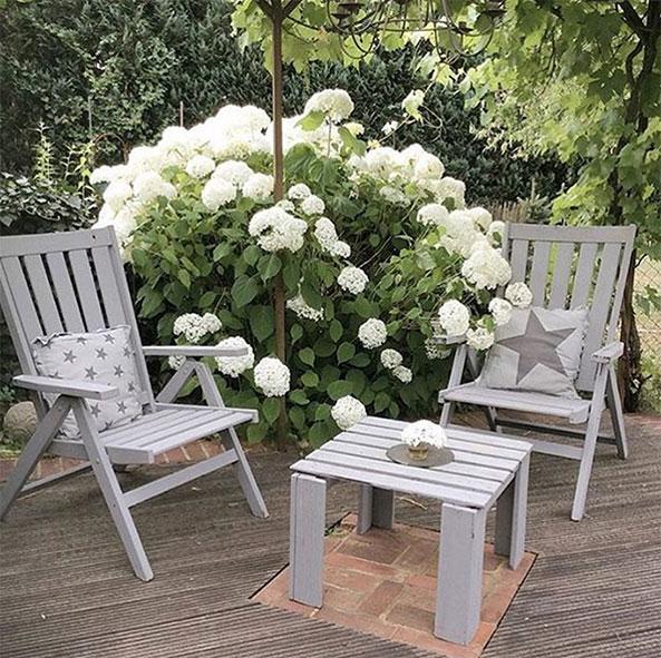 hortensie-anabelle-an-terrasse